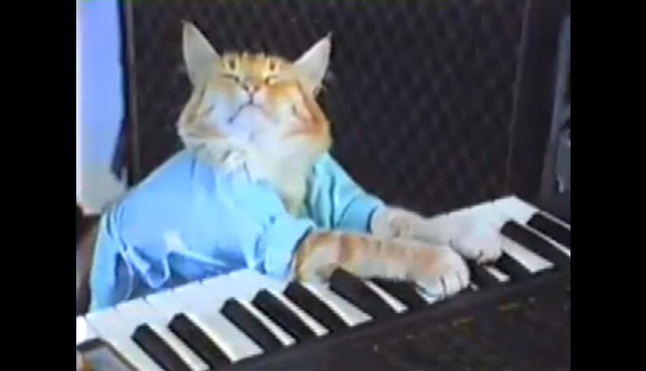 tfm_piano_humanizados.jpg